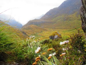 Mountains, Routeburn,helenblairsart