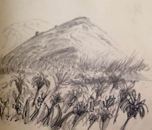 sketch, helenblairsart