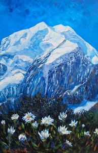 Mt Cook Daisies, helenblairsart