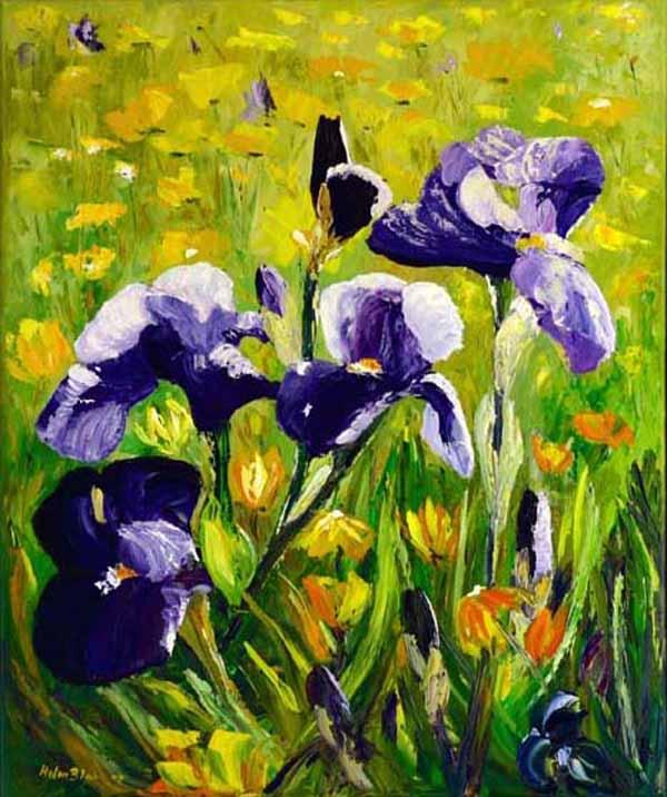 Purple Iris, helenblairsart