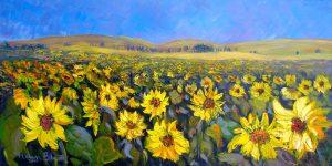 Sunflowers, helenblairsart