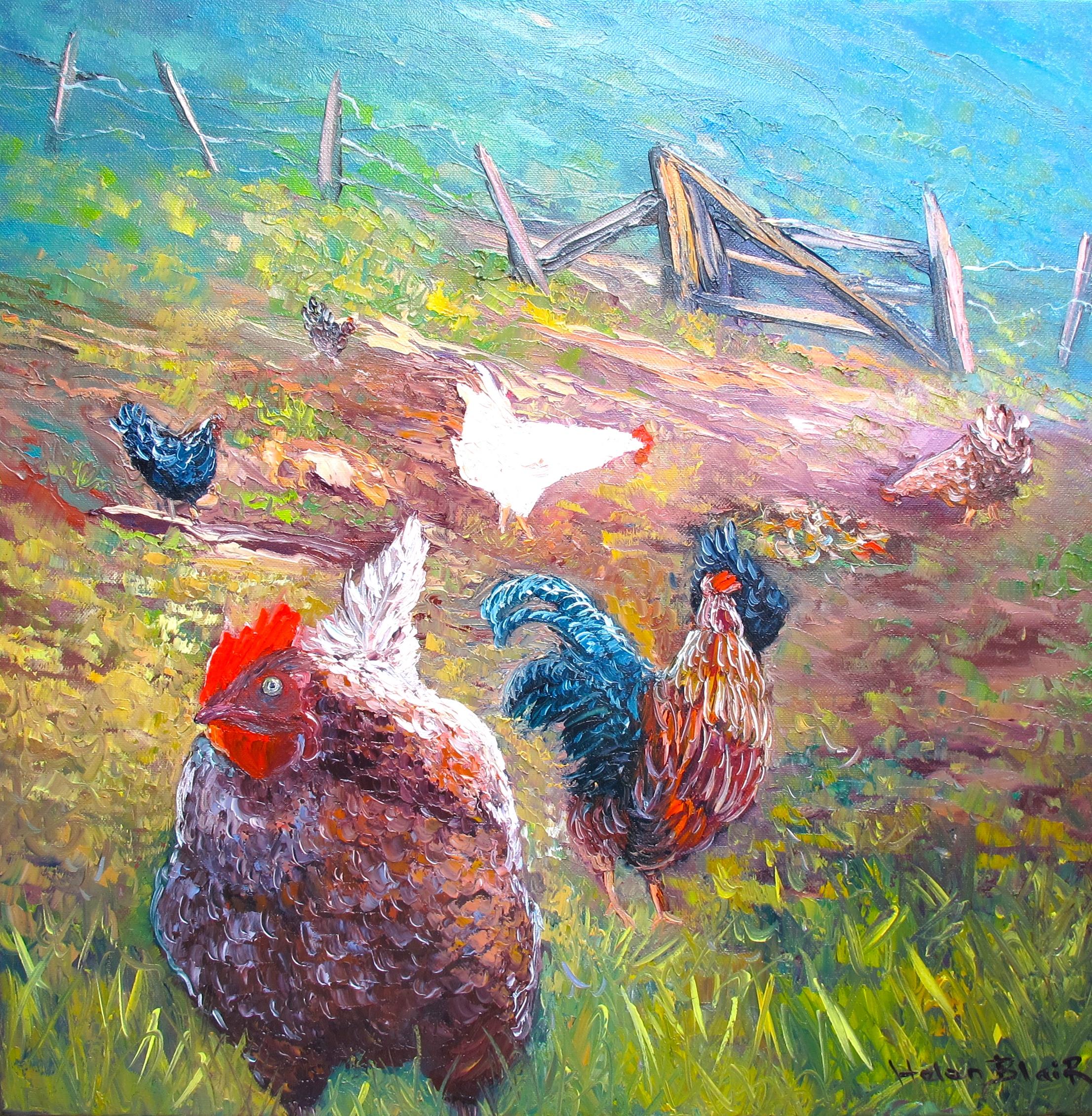 Farmyard Chickens, helenblairsart