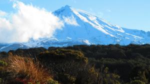 Mt Ruapaehu, helenblairsart