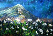 Mountain Daisies#1, helenblairsart