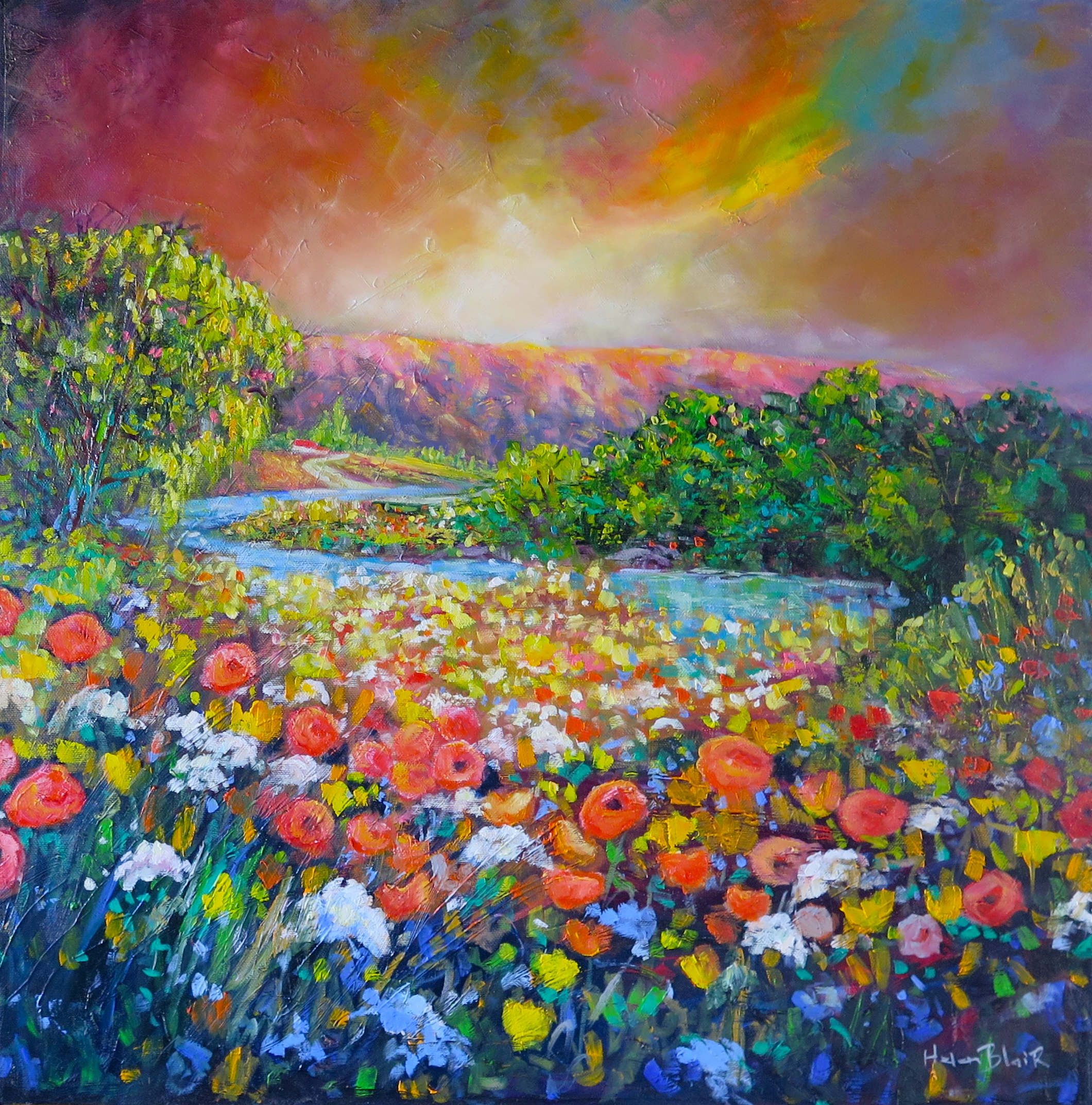 Otago Wild Flowers, helenblairsart