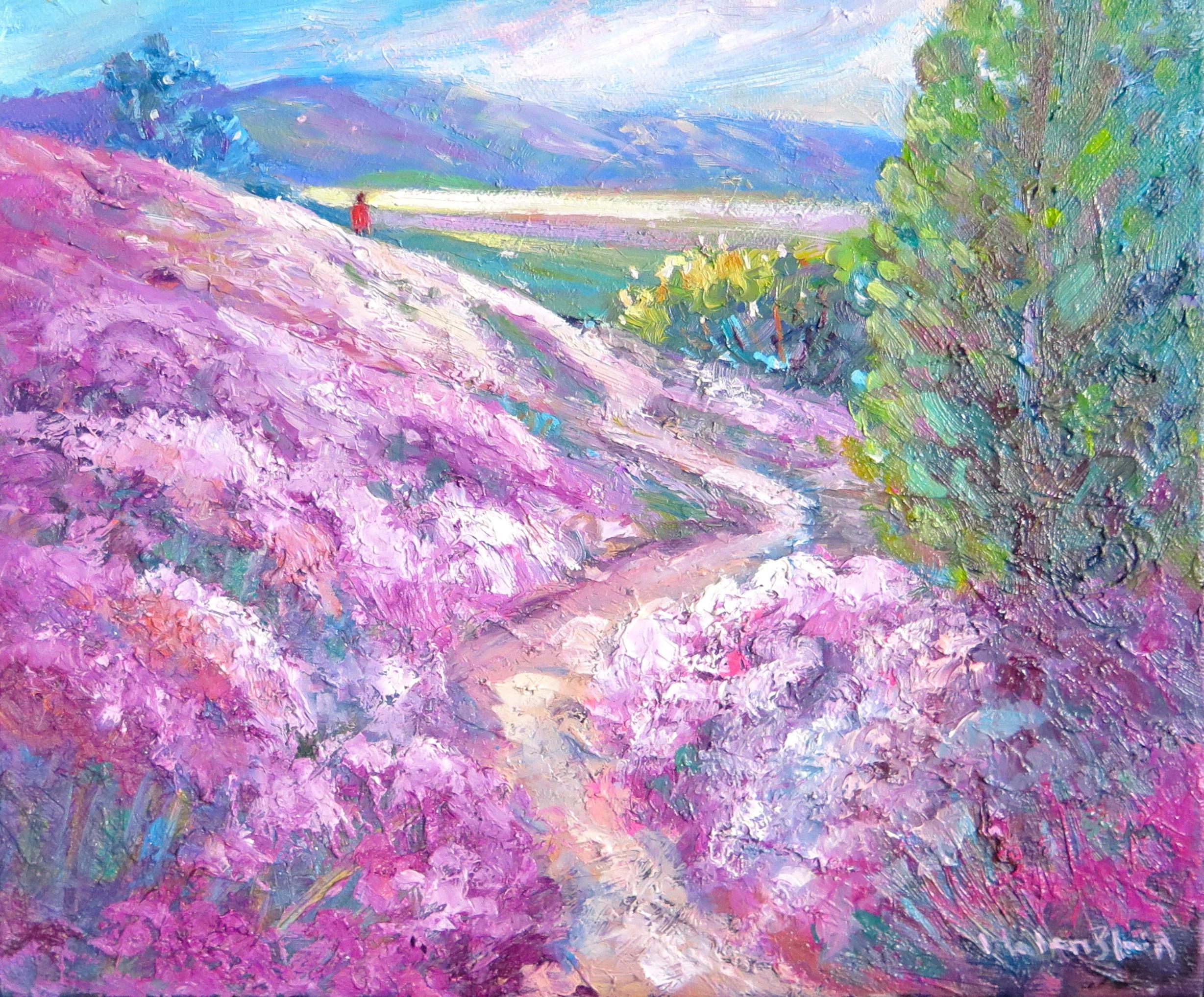 Wild Thyme Hills, Alexandra, original oil by Helen Blair