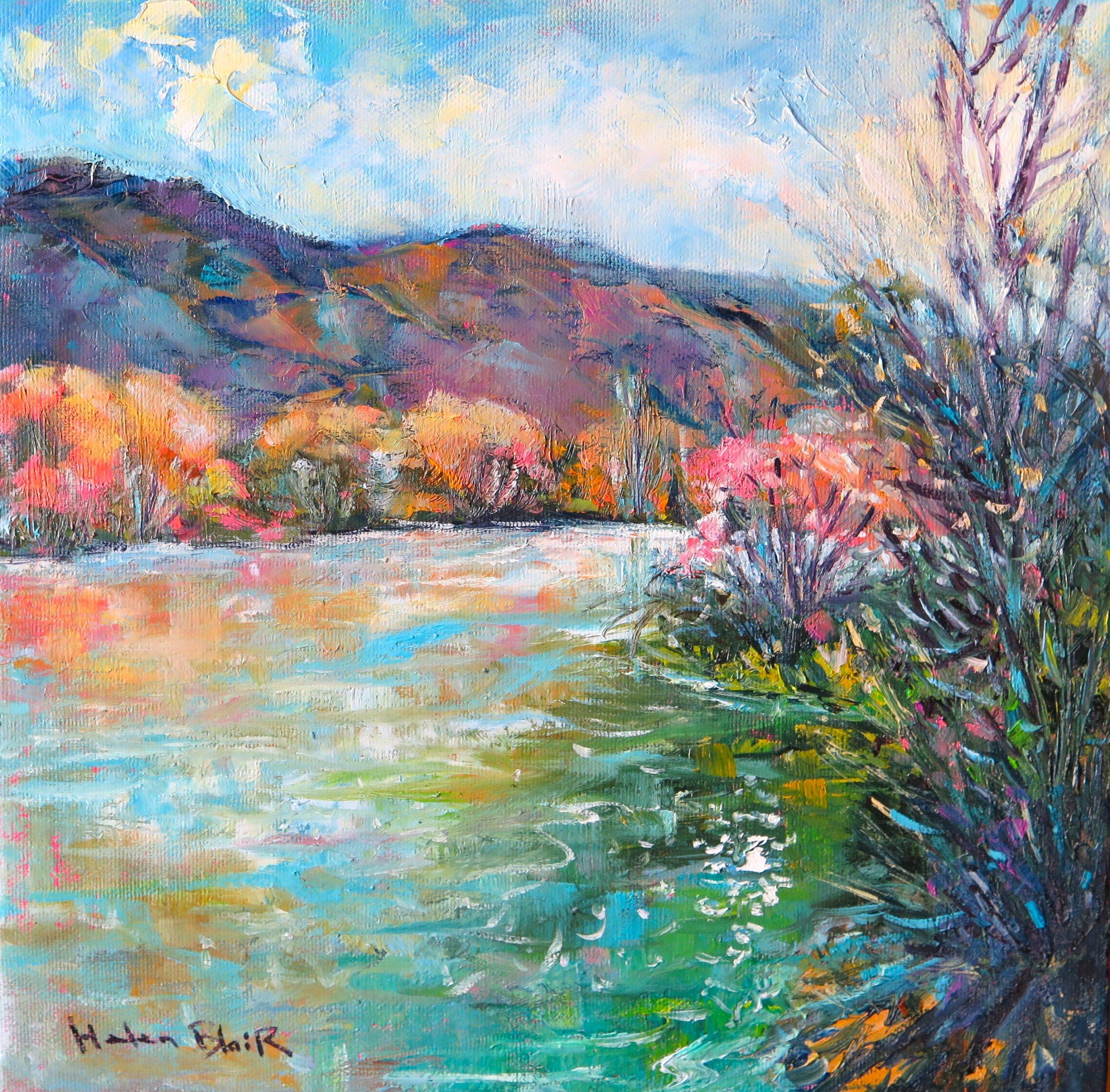 Clutha River by Helen Blair